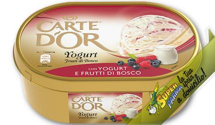 """CARTE D'OR vaschetta """"Yogurt ai Frutti di bosco"""" 1 kg – Algida"""